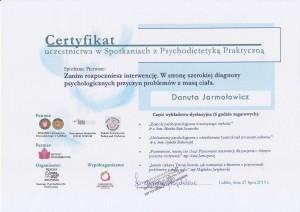 DanutaPsychoedukacja2013-07-23